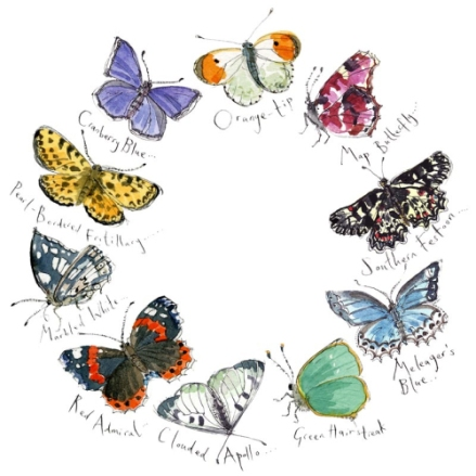 Butterflies I by Madeleine Floyd - A Signed Limited edition print